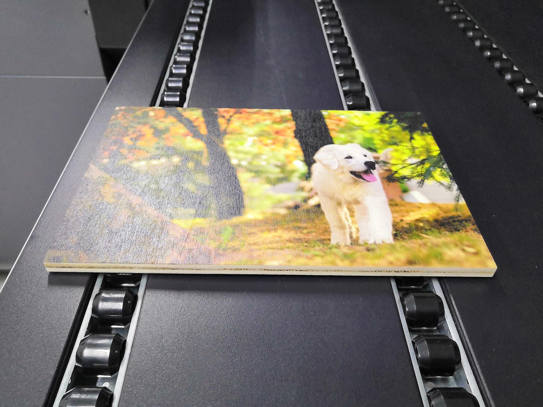 Pannello di legno stampato diretto